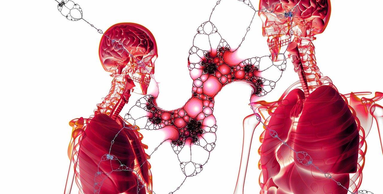 celulas del cuerpo humano