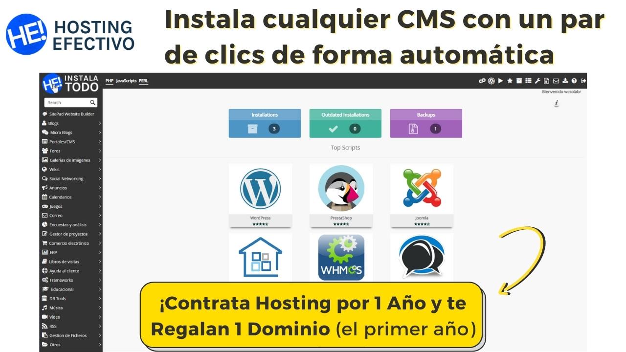 Puedes instalar cualquier CMS en hosting efectivo