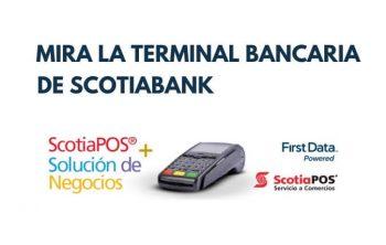 Imagen de Terminal Bancaria y TPV de Scotiabank 26