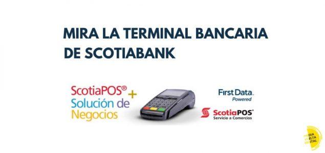 Imagen de Terminal Bancaria y TPV de Scotiabank 22