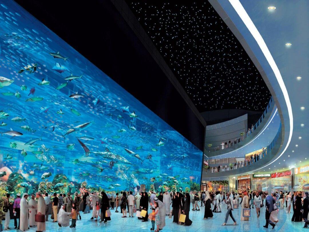 Imagen de 5 lugares imperdibles en Dubai 19