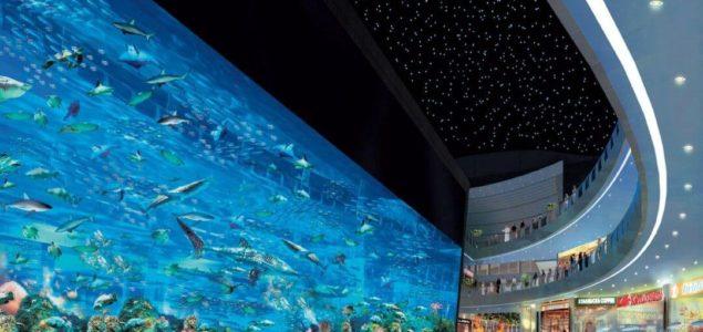 Imagen de 5 lugares imperdibles en Dubai 18