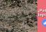 Imagen de Prueba tu visión: Descubre al Francotirador camuflado 3