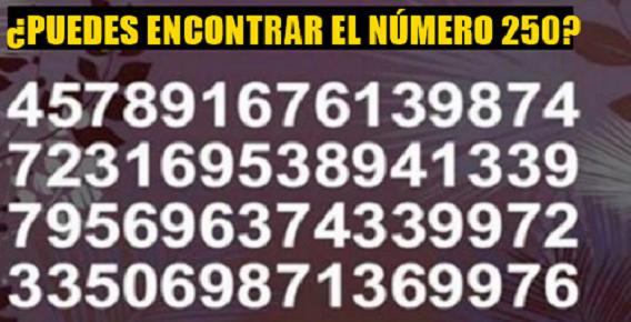 """Imagen de Rápidamente encuentra el """"250"""" 8"""