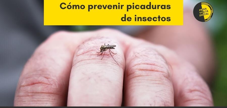 Cómo prevenir picaduras de insectos