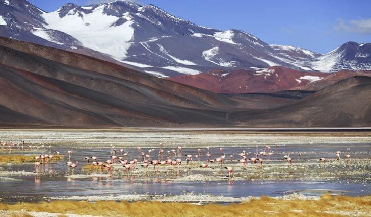 Imagen de ¿Dónde se encuentran los volcanes más altos del mundo? 18